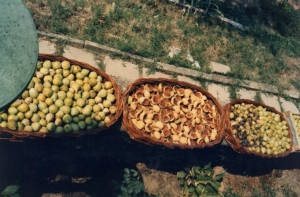 3 inch high basket to dry figs