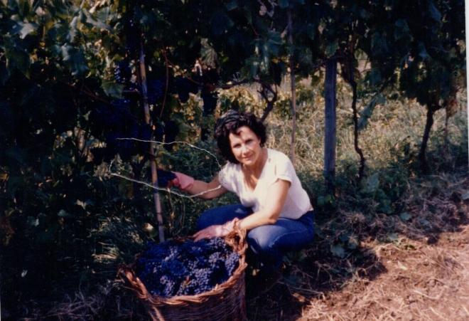 Grape basket Pietro made for me